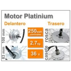 Kit Eléctrico Platinum LCD5 con Batería BT 9Ah