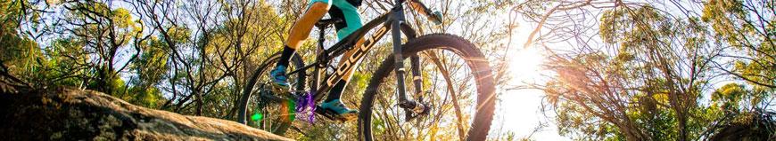 Bicicletas Focus en Ciclos Corredor